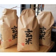 【ふるさとの味】平成30年産七尾産コシヒカリ玄米30kg(10kg×3袋)