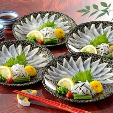 とらふぐ刺身 8皿セット【九州の味覚】