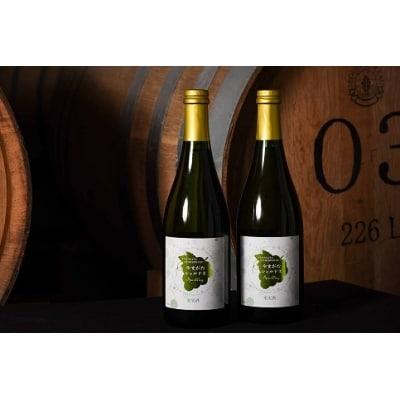 やまがた シャルドネ スパークリング ワイン 2本セット 015-E12