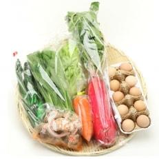 【高知県産】栽培期間中農薬不使用・季節の野菜と高知のブランド卵「土佐ジローの卵」セット