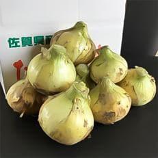 江北町産「たまねぎ」 6kg