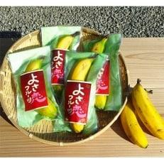 高知県産!丸かじりバナナ600g!