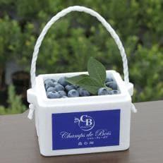 森のサファイア 大粒ブルーベリー 生果実 1kg(500g×2パック)