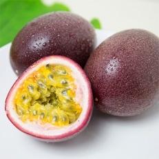 奄美大島産パッションフルーツ 約1.0kg (12玉)  【秀品】