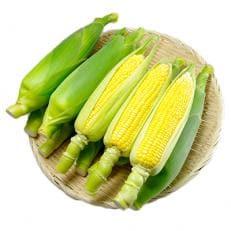 トウモロコシ Lもしくは2Lサイズ(10~12本)