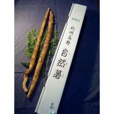 紀州山里の珍味自然薯 約800g~1kg