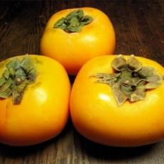 和歌山産 みかんとたねなし柿セット 秀品10kg (各5kg)