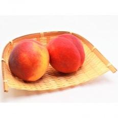 【数量限定】 信州ならではの希少品種 ワッサー 約3kg(10-13玉前後) 家庭用