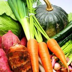道の駅松浦海のふるさと館『旬のお野菜+産みたて濃厚玉子6個+お米5kg』の大満足セット!