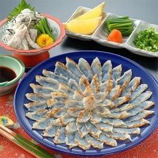 とらふぐたたき刺身 菊盛一尺大皿 約5人前(皮湯引き・ヒレ酒用ふぐひれ付)