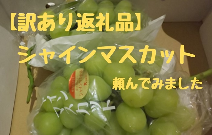 香川県の返礼品シャインマスカット