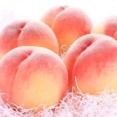 【産直・人気の特産品】和歌山の桃約2kg