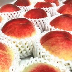 2020年7月上旬より順次発送【夏の美味】フルーツ王国 和歌山の桃 約4kg