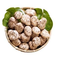 大分県産花どんこ椎茸300g 原木栽培 干し椎茸 肉厚