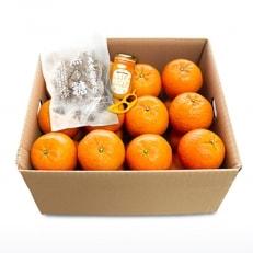 家庭用完熟たんかん 約5kgと特産品のセット オレンジピーラー付き