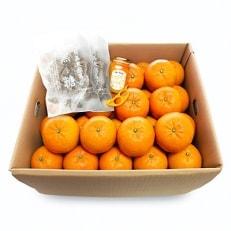 家庭用完熟たんかん 約10kgと特産品のセット オレンジピーラー付き