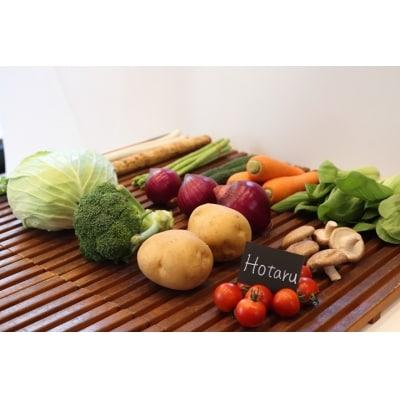 【2か月に1回お届け】むなかた旬の野菜お任せセット(11~12品)【定期便】_STB34