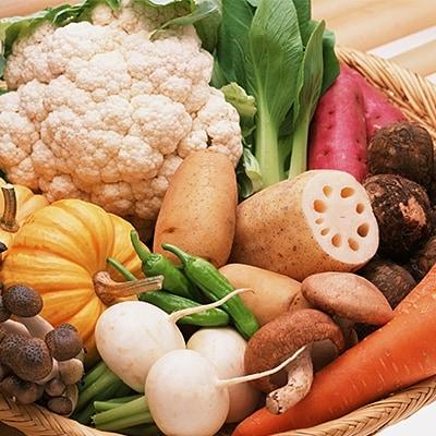 福島県玉川村産季節の野菜や果物の詰め合わせ