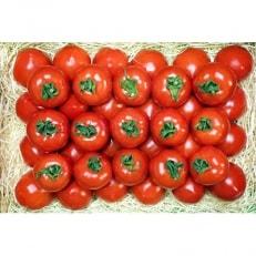 フルーツトマト「星のしずく」 900g