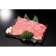 尾花沢牛焼肉用カルビ・モモ500g