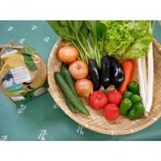 【令和元年産】旬野菜の詰め合わせ 「大地の恵みセット」5~6種+コシヒカリ2kg
