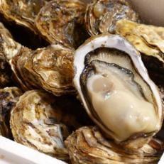厚岸産殻牡蠣 『マルえもん2L-size 14個入り』