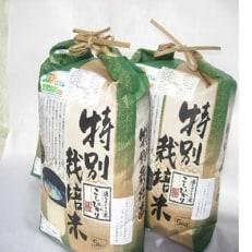 (水飼)令和元年産特別栽培米 コシヒカリ5kg入り2袋