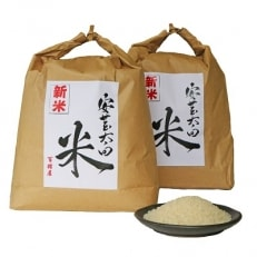 【令和元年産】コシヒカリ・ヒノヒカリ食べ比べセット 計8kg