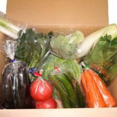 台風被害に負けるな!袖ケ浦市産野菜の詰め合わせ