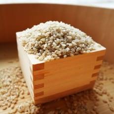 【令和元年】玄米30kg 福井県産 若狭の恵米 あきさかり
