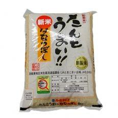 【令和元年JAとまこまい広域取扱 安平町特産品】たんとうまい5kg 〔ななつぼし〕