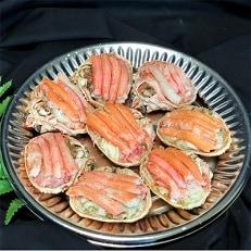 【北海道森町産】ずわい蟹甲羅盛(約60g×8個入)