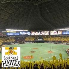 福岡ソフトバンクホークス 公式ファンクラブ「クラブホークス」入会権利(ハイグレード会員)(1名様)