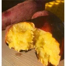 【訳あり】食べ比べさつま芋(シルクスイート、紅はるか各5kg)計10kg