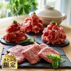 【さとふる限定】村下商事大容量シリーズ 味麗豚もも肉切り落とし・味麗豚挽肉セット2.5kg