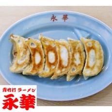 佐野餃子(中)24個4人前×2袋と濃縮佐野ラーメン6人前