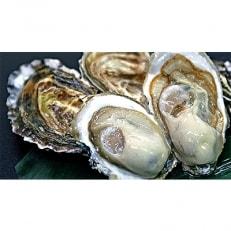 厚岸ブランド牡蠣『カキえもん』L-size15個入り