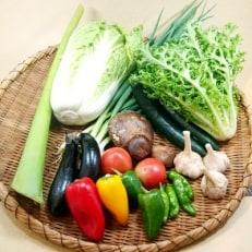 【産地直送新鮮野菜】 高知県産 南国土佐の季節の野菜詰め合せセット【野菜セット】