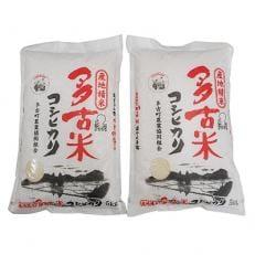 令和元年産多古米コシヒカリ 精米10kg(5kg×2袋)