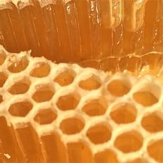 巣蜜(コムハニー)蜂蜜4点ギフトセット