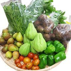 八州高原マルシェ自慢の旬な野菜たち