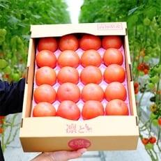 【大容量4kg】四万十育ちのトマト「凛と」で毎日笑顔!