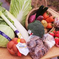 旬の魅力を詰め込みました!!小野市産季節の野菜セット