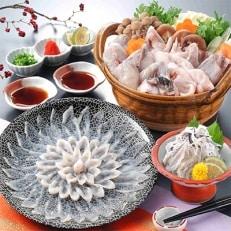 とらふぐフルコース【刺身菊盛・ちり鍋】シメに中間産米麺付 たっぷり豪華2人前