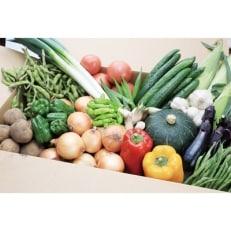 旬の野菜詰め合わせセット(石安米肥店)