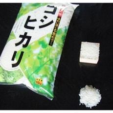 「令和元年産 新米」勝山産エコファーマ認定米コシヒカリ10kg×1