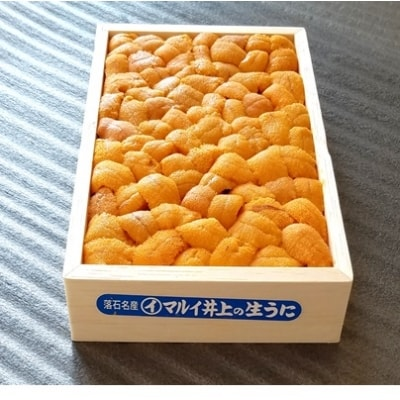 <予約品>エゾバフンウニバラ詰め150g×1折 SB-71004