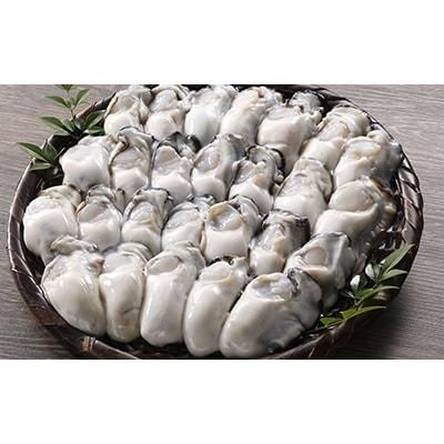 釧路管内産「生食用」むき大粒牡蠣500g×2(牡蠣酢・牡蠣しゃぶお勧め)[Ho202-Q022]