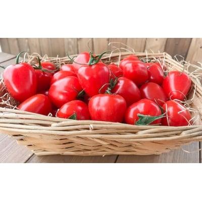 【先行受付 4月~6月お届け】稀少なミニトマトトマトベリーH004-026