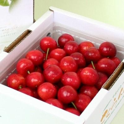 【果物王国 山形】さがえ産フルーツ5か月定期便 ~至福のフルーツセット~ <糖度保証付き入り>